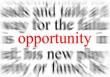 فرصت چیست؟(Opportunity)